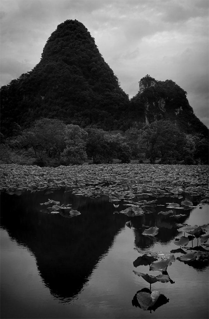 IMG-9510-Guangxi-Yangshuo-20150726-karstIleafIV.jpg