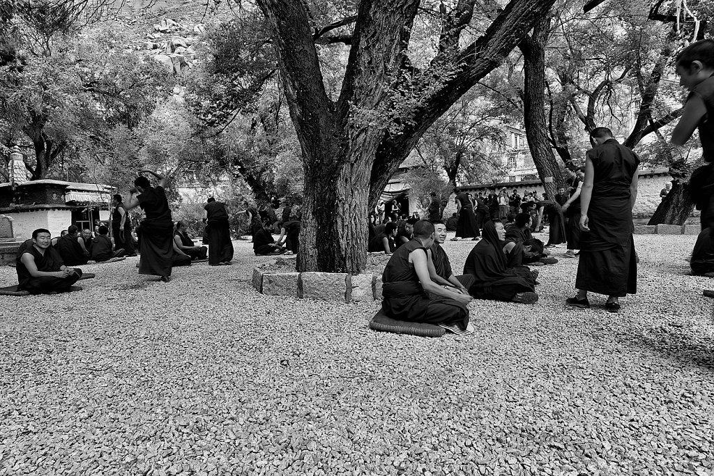 IMG-4845-Tibet-Sera-20130624-MonkII.jpg